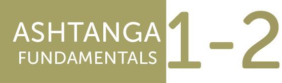 ashtange fundamentals kurs
